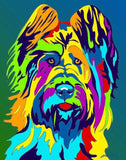 Briard Matted Prints & Canvas Giclées - MULTI-COLOR DOG PRINTS