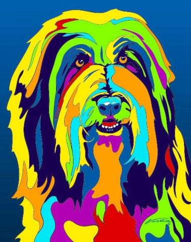 Multi-Color Bearded Collie Dog Breed Matted Prints & Canvas Giclées - MULTI-COLOR DOG PRINTS