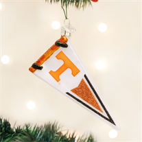 University of Tennessee Glass Pennant