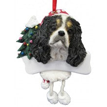 King Charles Cavalier Tri-color