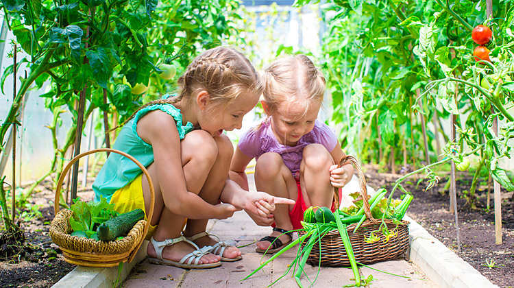 Gardening with Kids - Fresh is Best!