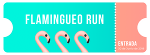 Entrada Flamingueo Run - 30 de Junio, Valencia 2018 - Flamingueo