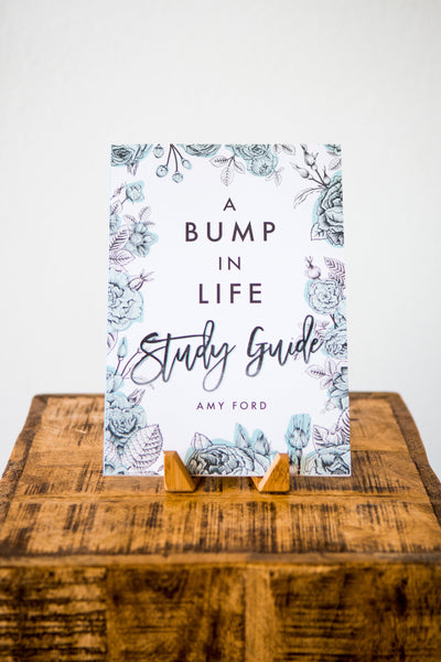 A Bump in Life Study Guide