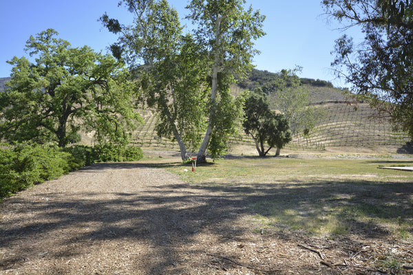 RANCH with Vineyard - RA3068