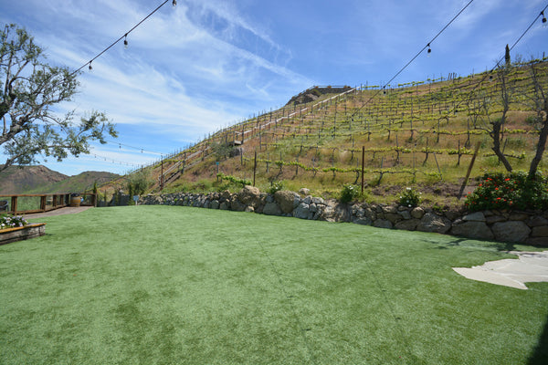 VILLA31424 - Vineyard Only