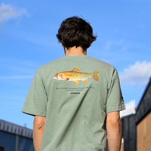 Sustainable T-shirts from Patagonia f826ccf1d