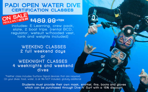 how to get scuba certified dive n surf
