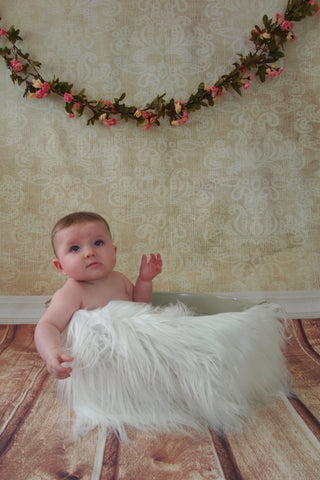 Baby Photoshoots are Back in Wareham with New Props