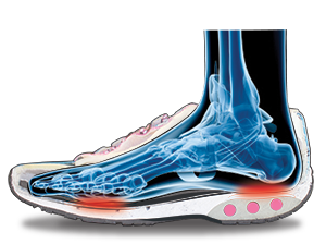 illustration of a foot in a Therafit shoe