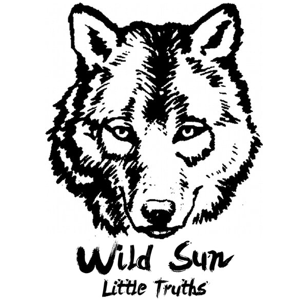 "Wild Sun ""Little Truths"""