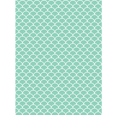 Mint Scallop Backdrop