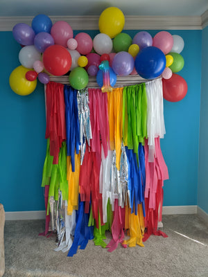 Custom Fringe Rainbow Backdrop