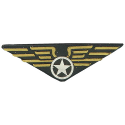 Aviator's Pin