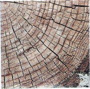 Rustic Cut Timber Beverage Napkins - 16 Count/2 Ply