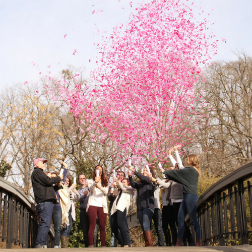 Gender Reveal Confetti Girl Popper