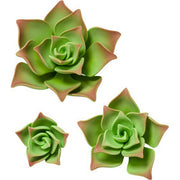 Gumpaste Green Succulents Cake Toppers 3 Pk