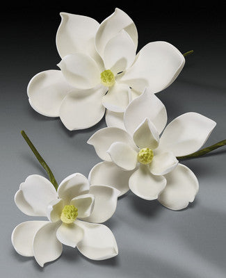 Gum Paste Flowers - Cake Topper - Magnolia 3 Piece