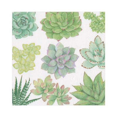 Fancy Succulent Cocktail Napkins 3ply-20ct