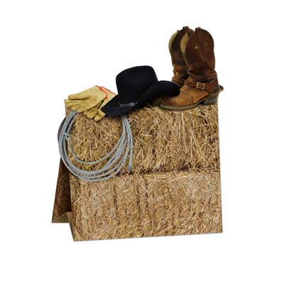 Western Centerpiece - 3-D - 9.5 in.
