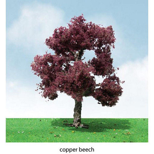 "Copper Beach Trees 3-3.5"" (2)"