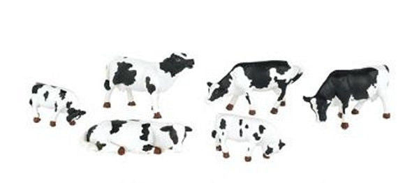 O Black & White Cows