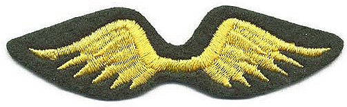 Brownie Wing Patch