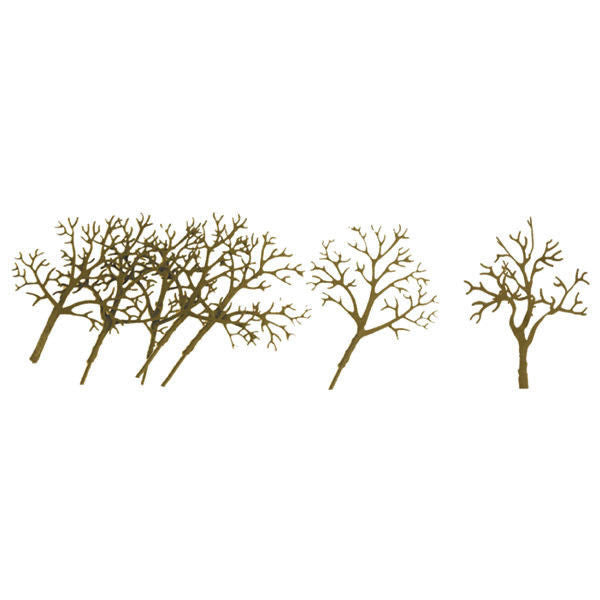 "Deciduous Trees 3-4"" (16)"