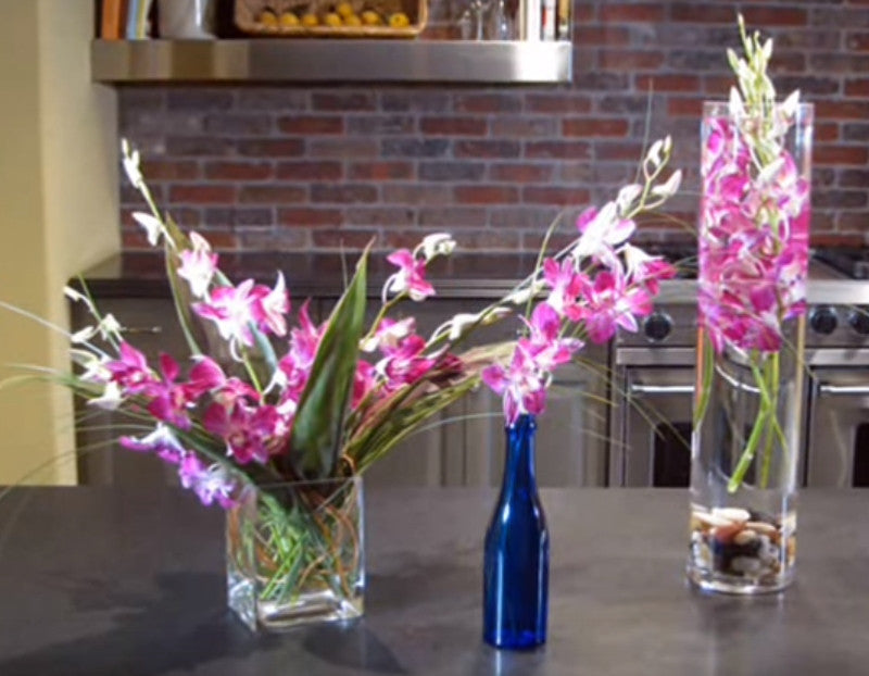 DIY Arranging Dendrobium Orchids