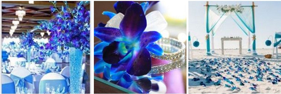 blue orchid flower arrangement and design idea for wedding and special event