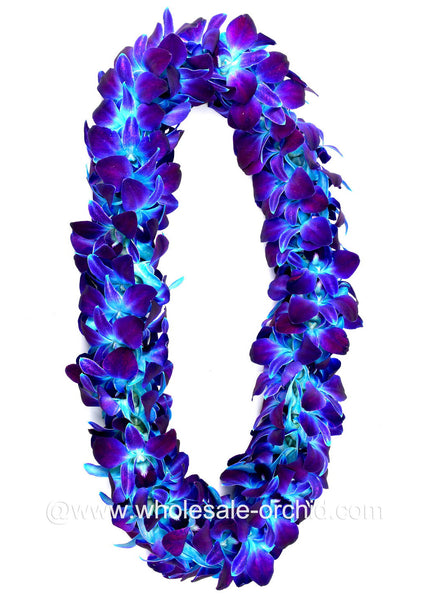 DOUBLE Lei - Blue Sonia Orchid Lei