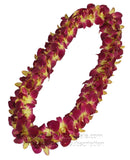 DOUBLE Yellow Red Sonia Orchid Lei