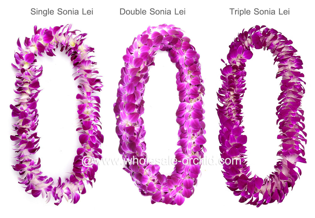 Fresh Flower DOUBLE Lei - Purple Sonia Orchid Lei