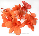 Loose bloom orchid flowers - TRIO candy