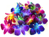 Assortment Loose bloom orchid edible flowers 8 colors