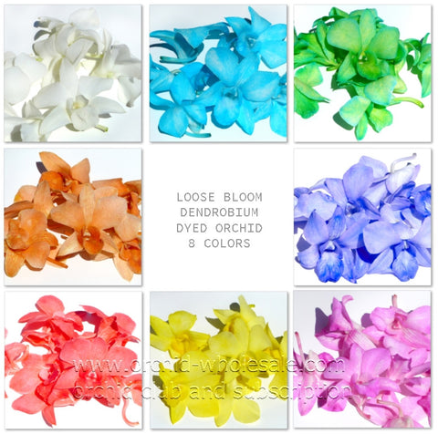 Assortment Loose bloom dyed orchid flowers 8 COLORS