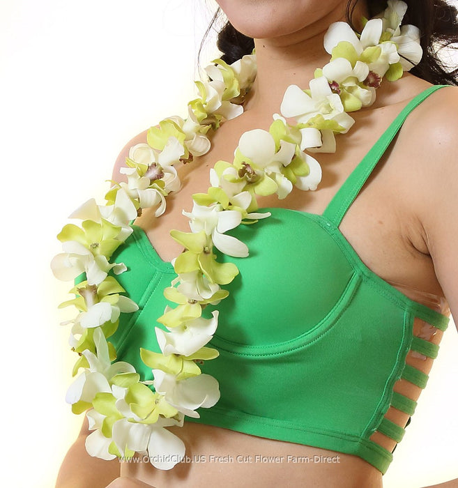 single lei white and green orchid