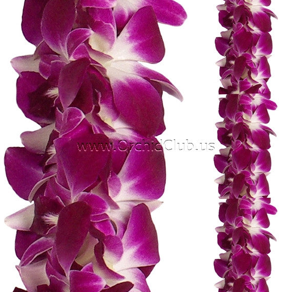 Orchid Garland DOUBLE Purple Sonia orchid Lei Strand ( 4 FEET & 2 FEET)