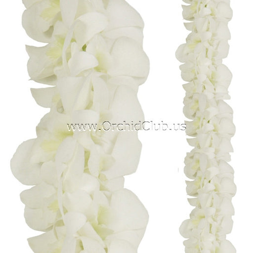 Orchid Garland DOUBLE white orchid Strand