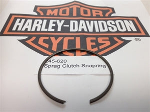 Sprag Clutch Snapring
