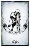 any means necessary zodiac sign poster print aquarius