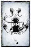any means necessary zodiac sign poster print capricorn