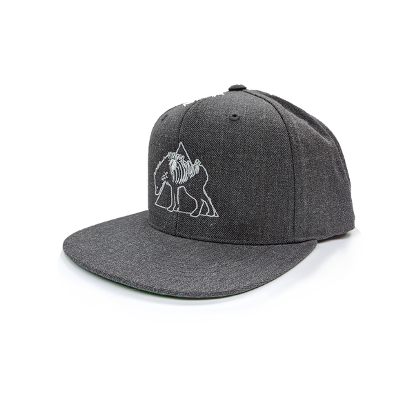 any means necessary shawn coss hyena logo snapback hat charcoal