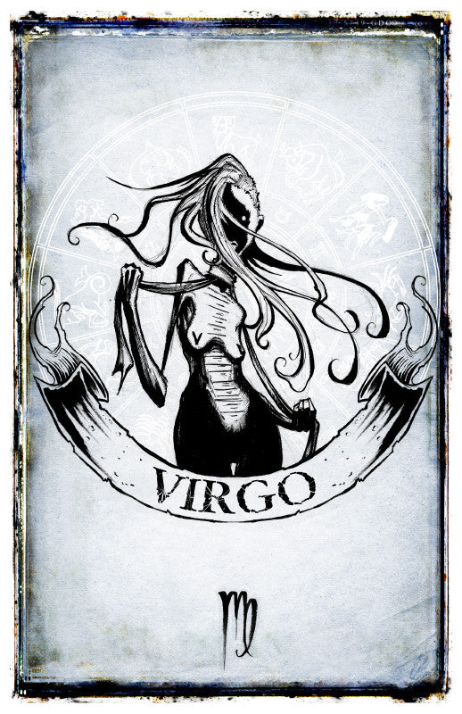any means necessary zodiac sign poster print virgo