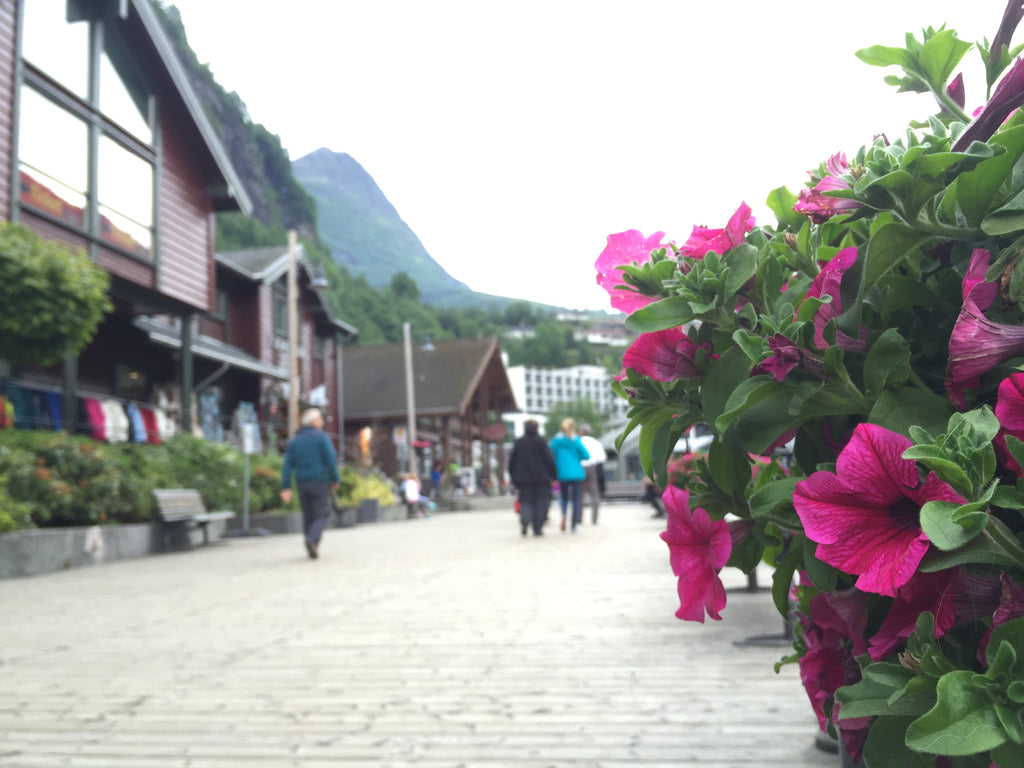 Downtown Geiranger, Norway. Cruising the coast of Norway part 1 for Resolute Boutique
