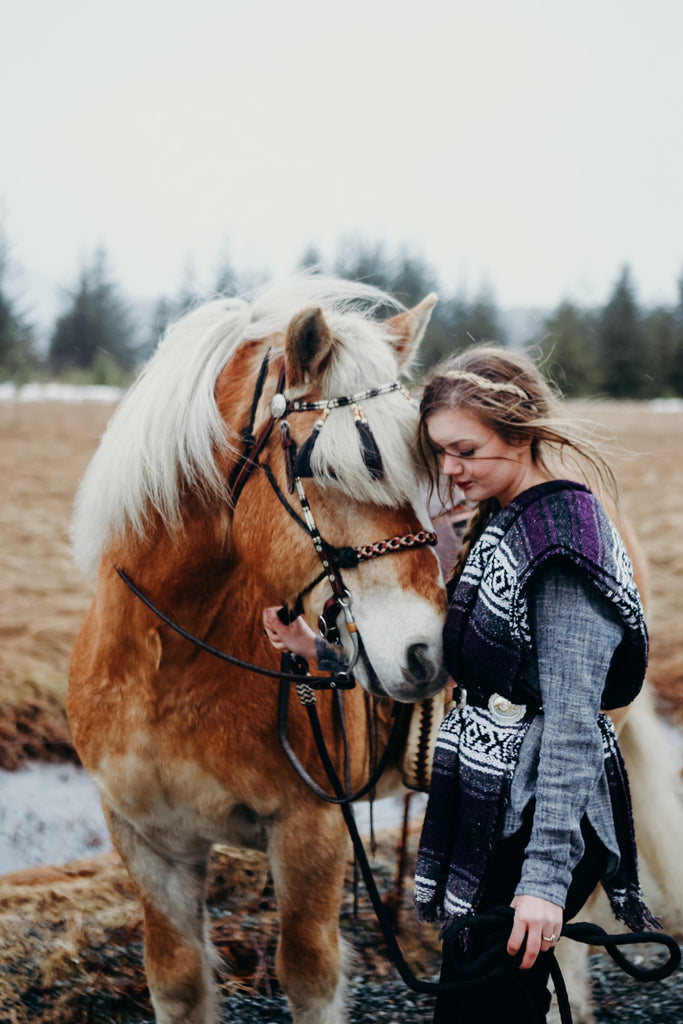Editorial Look for Riding horses in Juneau, Alaska