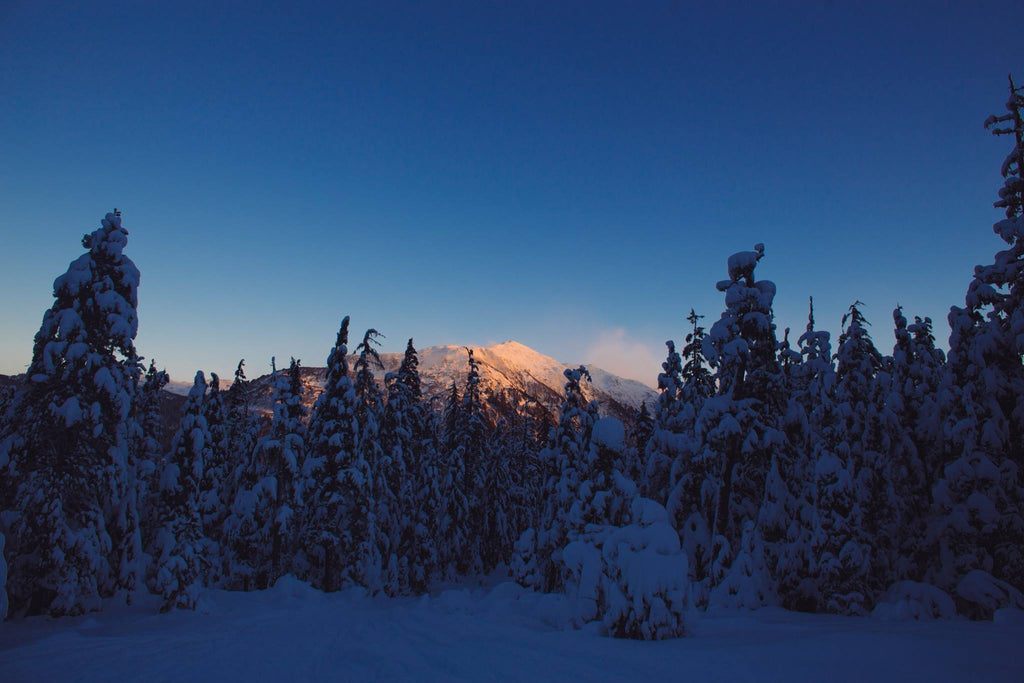 Snowshoe & Ski in the same day in Juneau, Alaska for Resolute Boutique & Lifestyle
