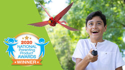 Go Go Bird selected as a NAPPA Awards winner!