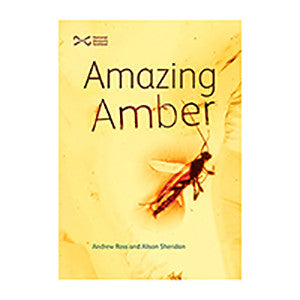 Book about amber