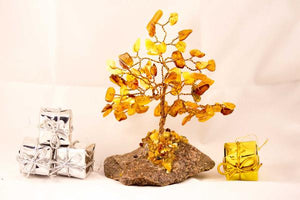 Amber Tree is