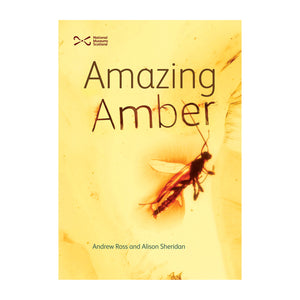 Amazing Amber - Reference Book by Andrew Ross and Alison Sheridan